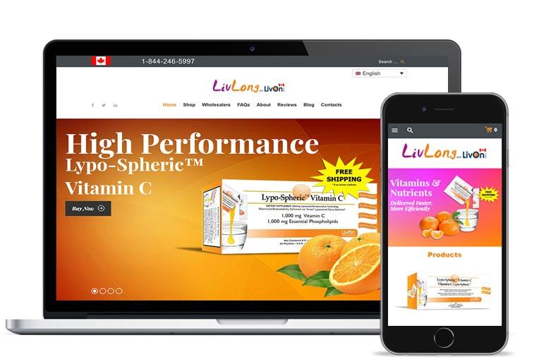 calgary responsive website designer
